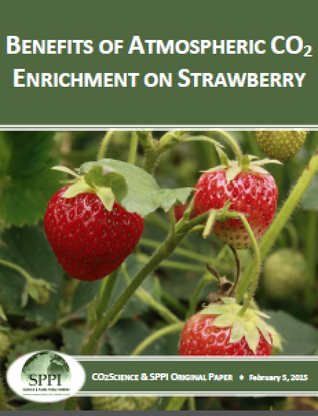 agricultural_species_strawberries